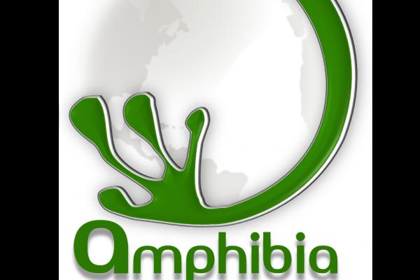 Amphibia Group Ltd