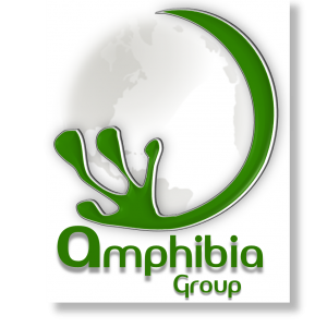 Amphibia Group Ltd